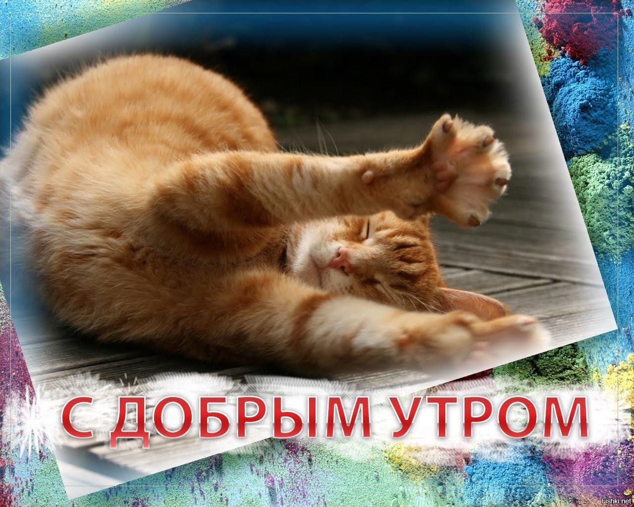 http://fishki.net/upload/users/2015/10/22/782370/5d6380f70f603aa96074647b8c986ee0.jpg