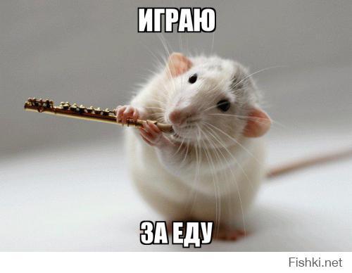 http://fishki.net/upload/users/377063/201410/24/tn/2fe4b3279e4516c45c518d3a342904d5.jpg