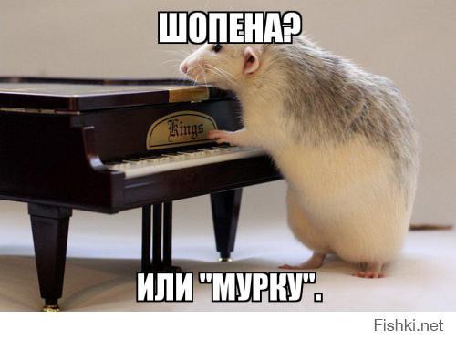 http://fishki.net/upload/users/377063/201410/24/tn/bed6120069b2b9d6bb55ce8098cc301e.jpg