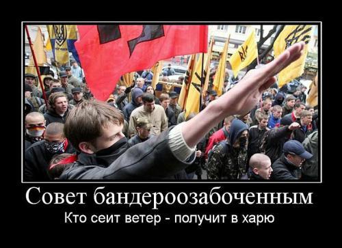 """И не ты ли, """"куянын"""", говорил, что """"ВАШИ"""", с красно-черными знаменами банд-формирований УПА, НЕ """"ЗИГУЮТ""""?!"""