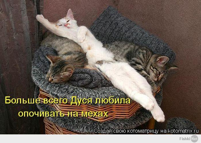 http://fishki.net/upload/users/419189/201403/14/d38775f736de79c56c8f3274338ca73a.jpg