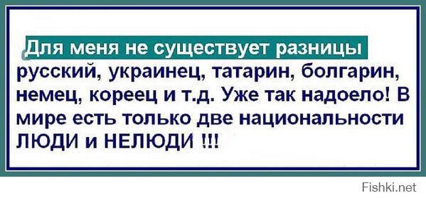 Фишкина солянка за 01.11.2014