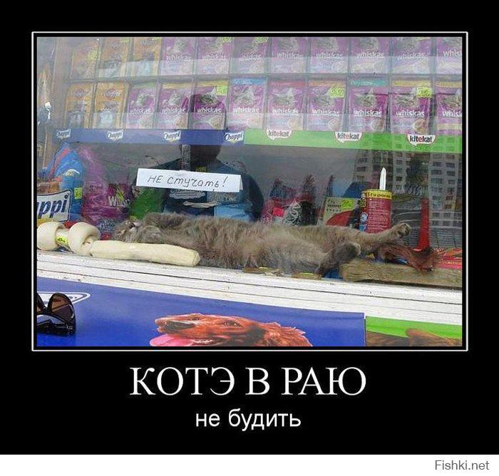 всем доброго утра)))