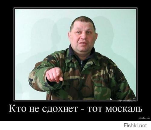 http://fishki.net/upload/users/456370/201407/19/tn/548e19ed58c6f9a8cd4ff2d291b0a9ff.jpg