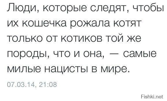 Фишкина солянка за 21.08.2014