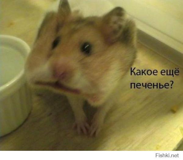:lol: