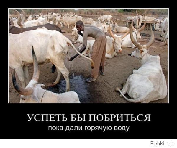 Ага, как же, приезжайте к неграм ёпта))