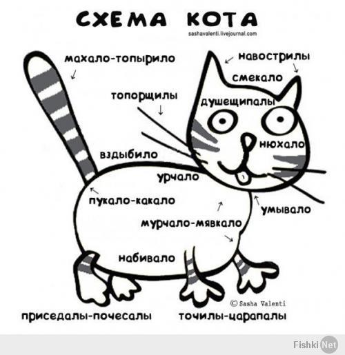 http://fishki.net/upload/users/521494/201406/14/tn/c90cb5bf2c0439306791044ca7fbdca0.jpg