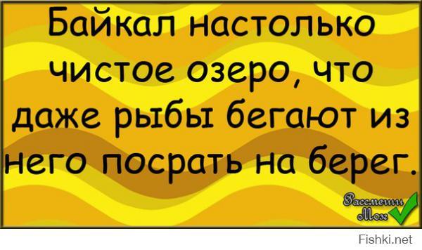 Фишкина солянка за 25.10.2014