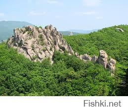 Парк драконов Приморский край